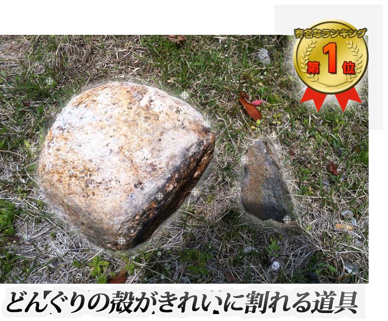 ドングリの殻がきれいに割れる道具